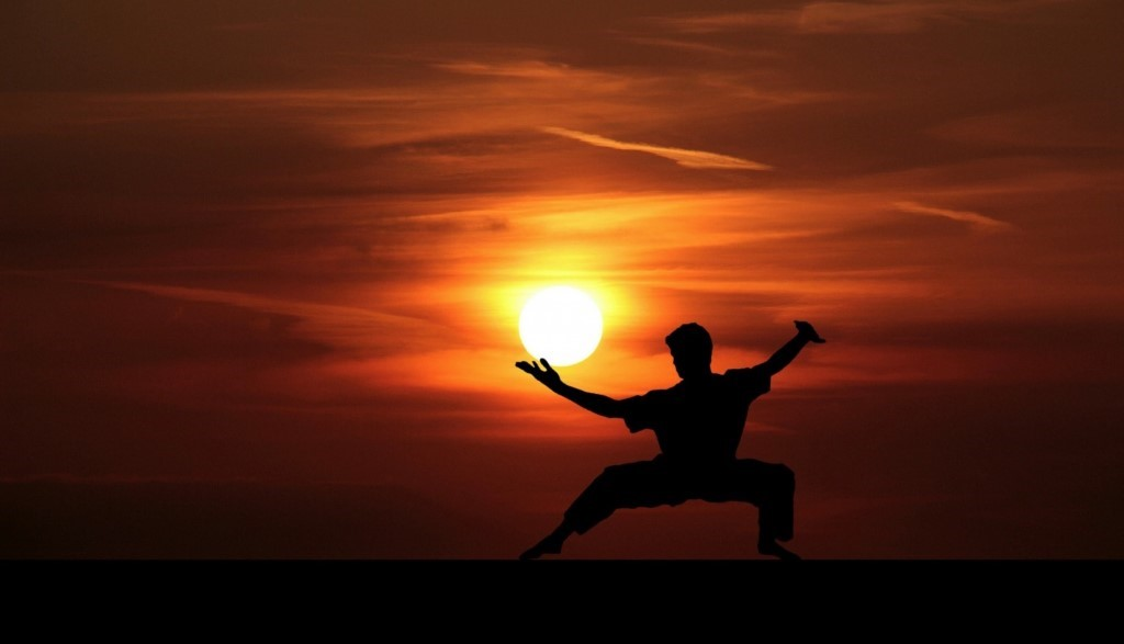 Kung Fu,master ,silhouette Free Stock Photo - Public Domain Pictures
